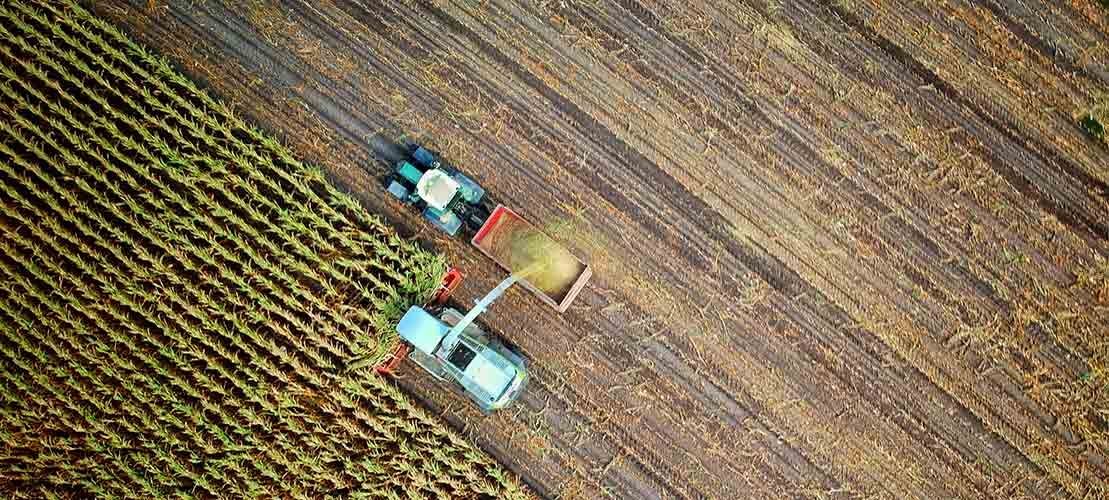Aerial shot of a corn field mid-harvest