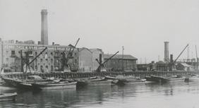 Thames Refinery